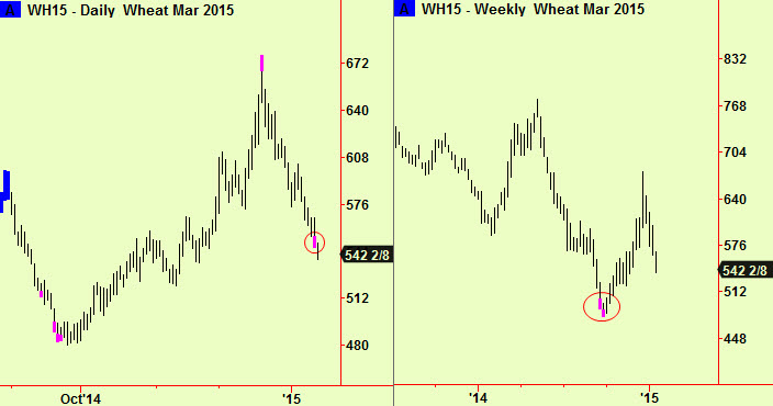 Wheat bottom extensions
