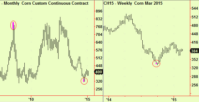 Corn Monthly and weekly