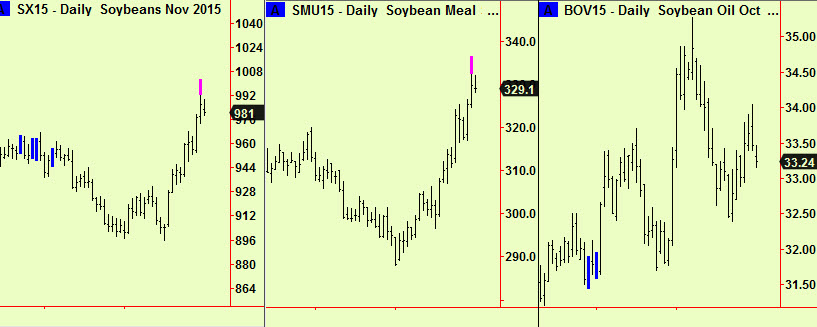 Soy beans, meal oil