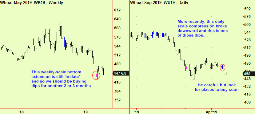 Wheat weekly bott & daily comp