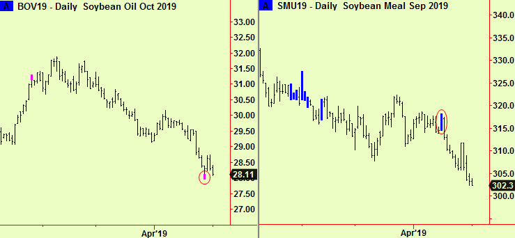 oil and meal signals
