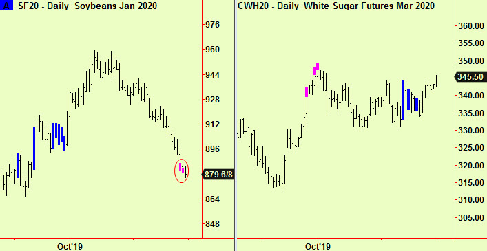 Soybeans and Sugar